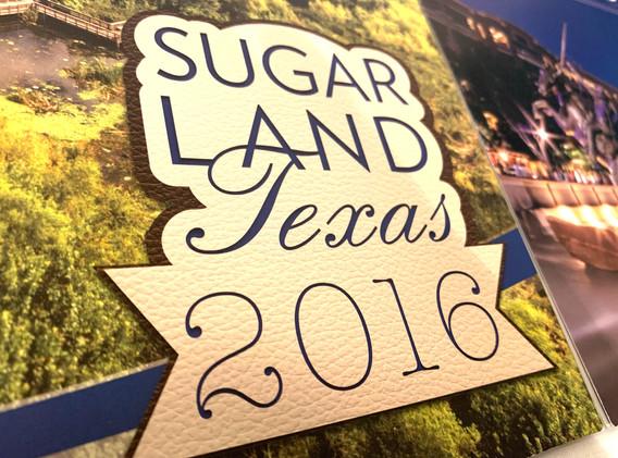 Calendar Covers (2016 detail)