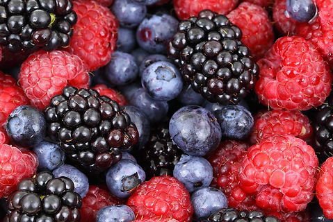 Berries-Blackberry-Blackberries-Berry-Ba
