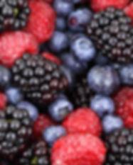 Berries-Blackberry-Blackberries-Berry-Ba