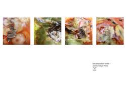 Decomposition Series