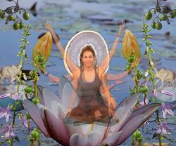 Lakshmi.website