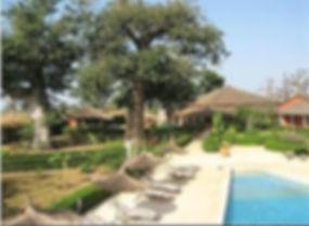 baobab soleil