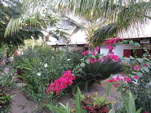 les paillotes au coeur d'un jardin tropical