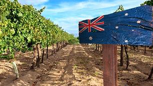 winesofaustralia_header-500x281.jpg