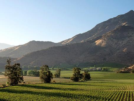 智利最大最重要的葡萄酒產區 Central Valley