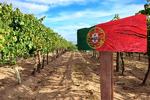 wines-of-portugal-travel-like-a-chieff-luxury-lifestyle-and-travel-blog.jpg
