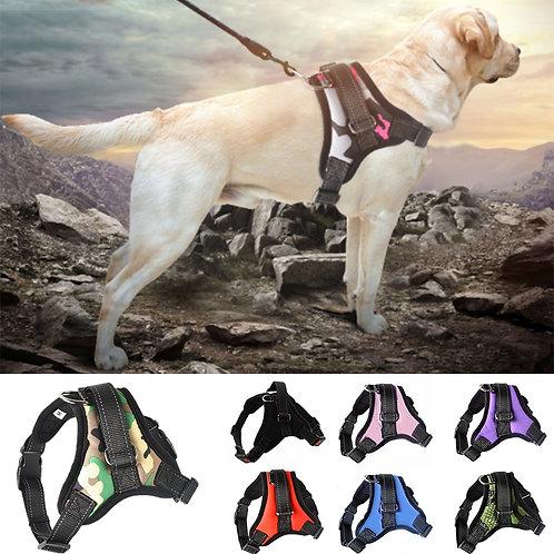 Belt Adjustable Dog Leash Dog Chest Vest Dog Collar Dog Supplies Pet Accessories