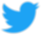 Twitter_logo_blue_bird.png