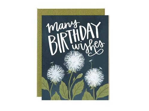 Many Birthday Wishes