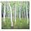 Thumbnail: Wooden Birch Design Puzzle