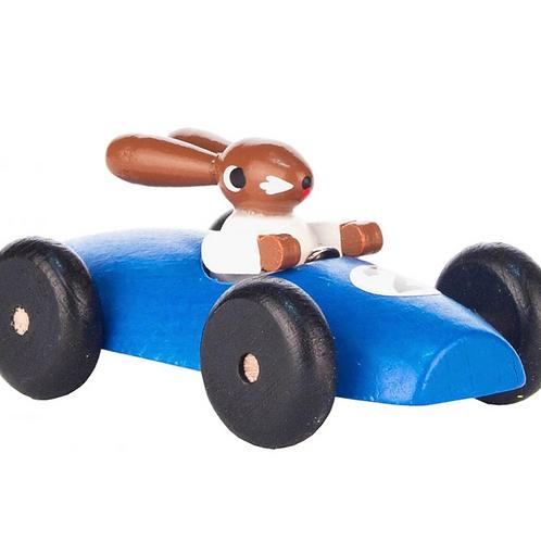 Rabbit Driving Race Car