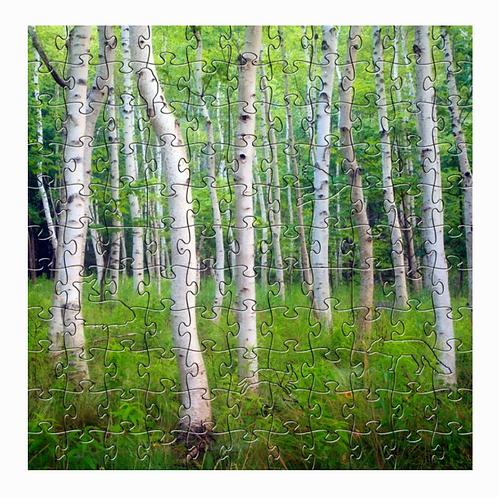 Wooden Birch Design Puzzle