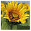 Thumbnail: Sunflower Jigsaw Puzzle