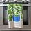 Thumbnail: Basil Herb Dish Towel