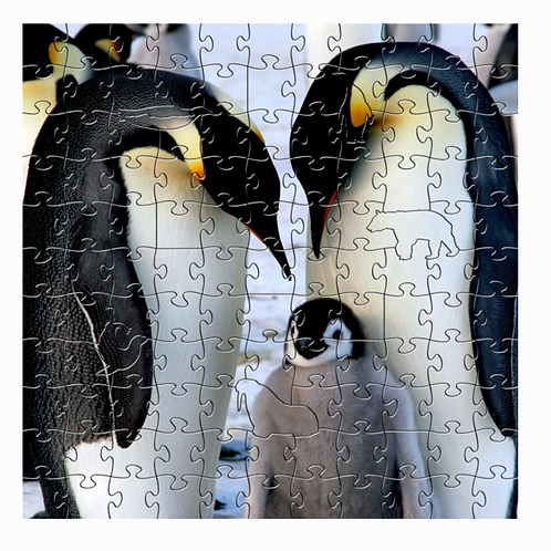 Wooden Penguin Puzzle