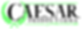 FIRSTLOGOPhotoshopExport-Green.png