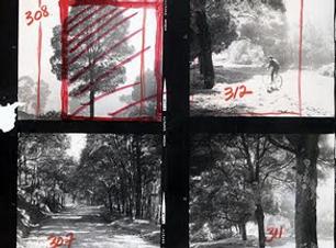 Captura de Pantalla 2020-08-23 a la(s) 7