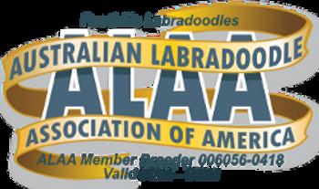 Foothills Labradoodles ALAA Logo 2020.pn