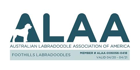 new alaa logo.png