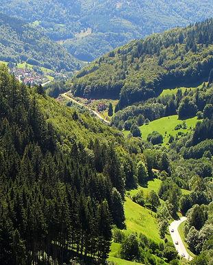 Germany%u2019s-enchanting-black-forest-n