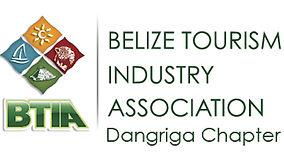 18885_BTIA chap logo-07.jpg