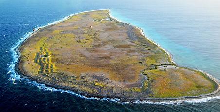 klein-Curacao-zeikant 3.jpg