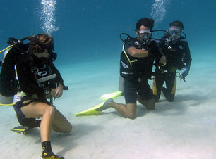 PADI-Open-Water-up-grade.jpg