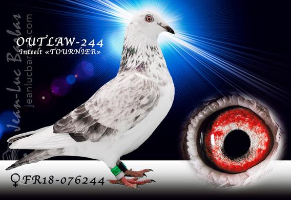 OUTLAW-244-www.jpg
