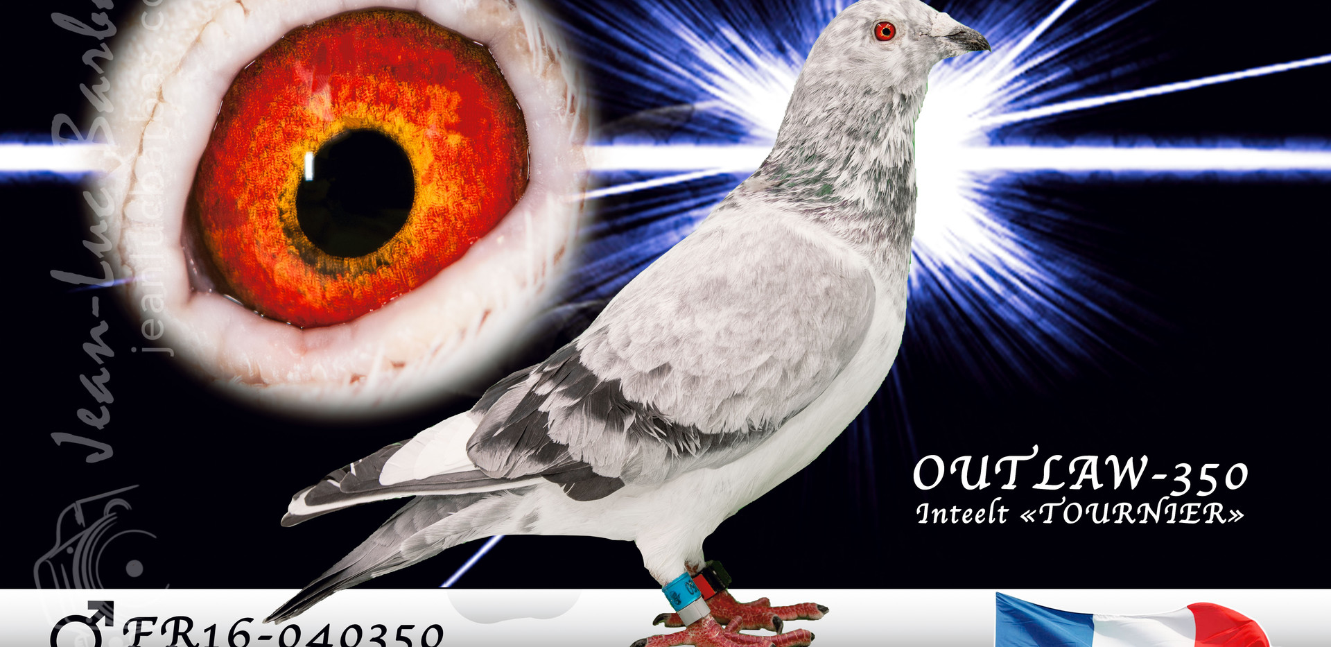 OUTLAW-350-D5C_2834-Modifier-Modifier-ww