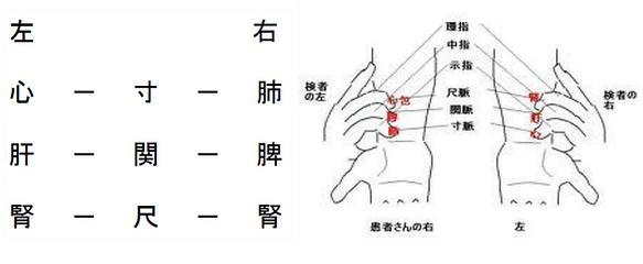 胃氣(中脈)を診る