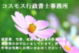 !cid_ii_jzugo6pl0.jpg
