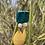 Thumbnail: Daffodil Drops