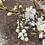 Thumbnail: Bubble Blossoms