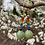 Thumbnail: Jade Rainbow Drops
