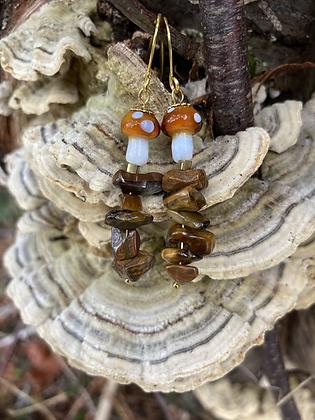 Small Tiger Mushrooms