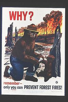 smokey-bear-1960.jpg