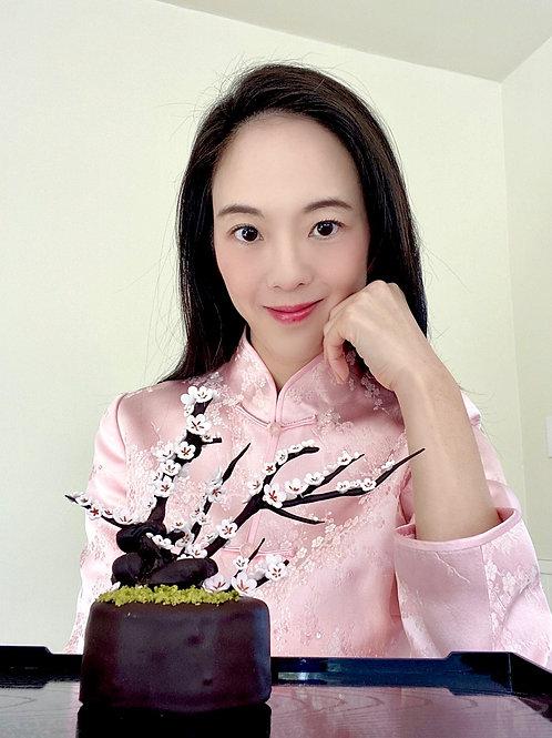Bonsai Chocolate