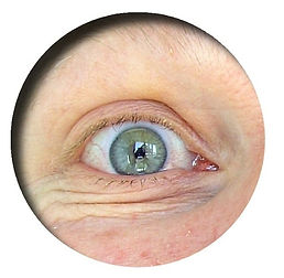 olivier leduc stage collage œil