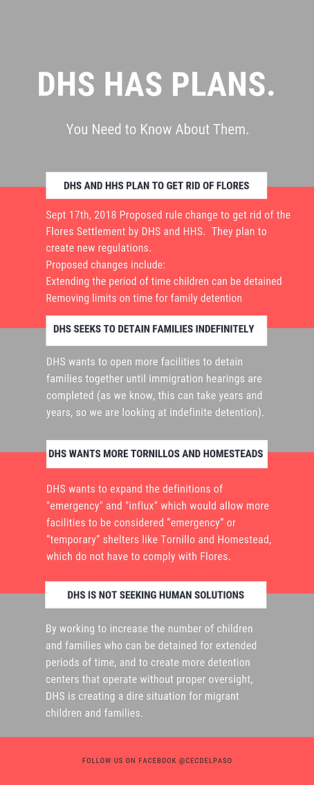 DHS infographic.png