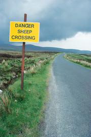 Ireland_0007.jpg