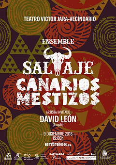 Cartel Ensemble Salvaje 2019.png