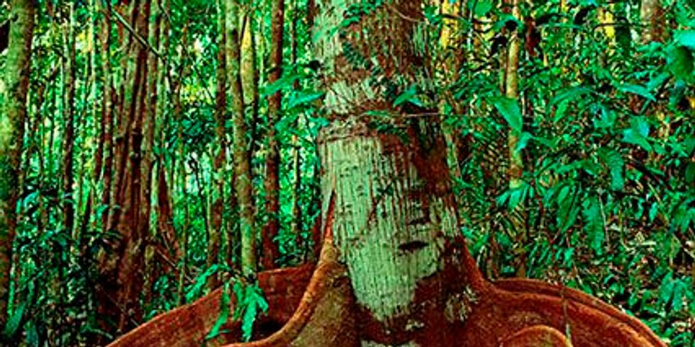 Papua International Confrence on Biodiversity