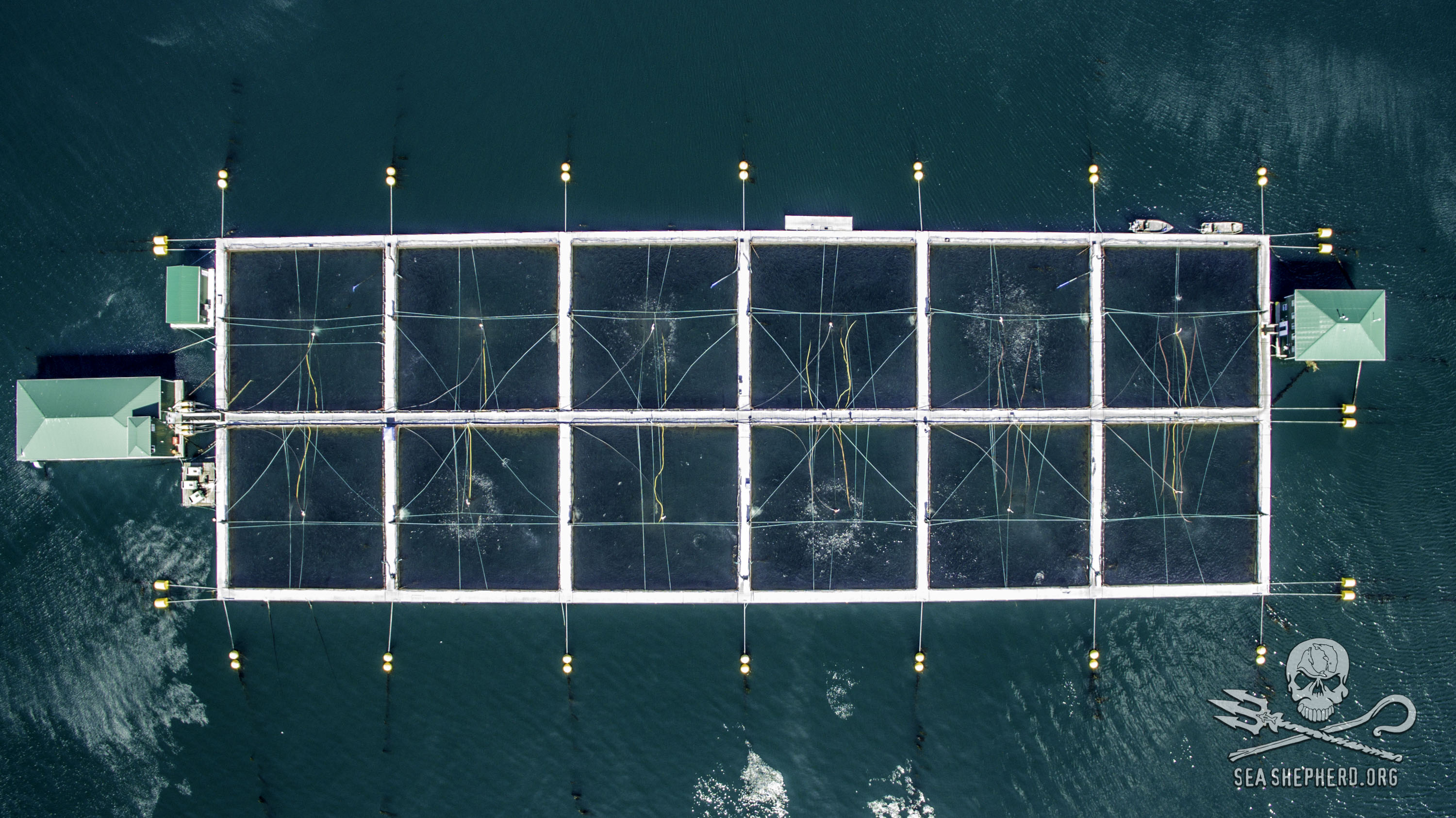 160730-SA-Drone-studies-of-Venture-Point-fish-farm-0051