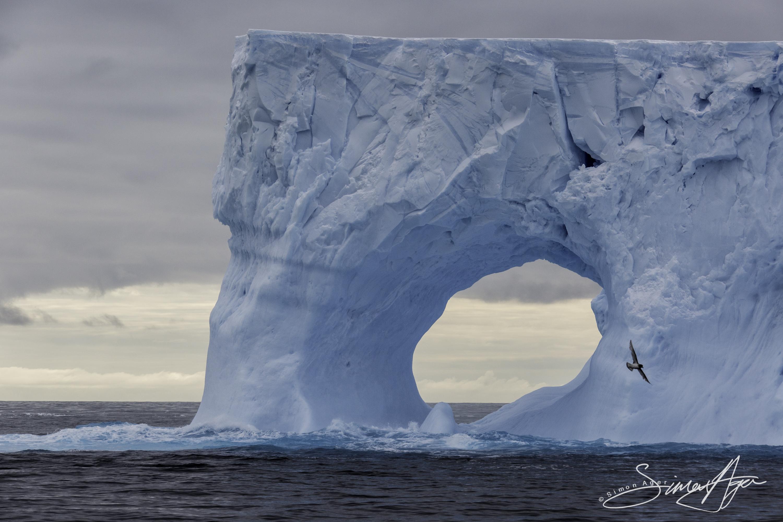 161216-SA-OW-iceberg-study-005-3092