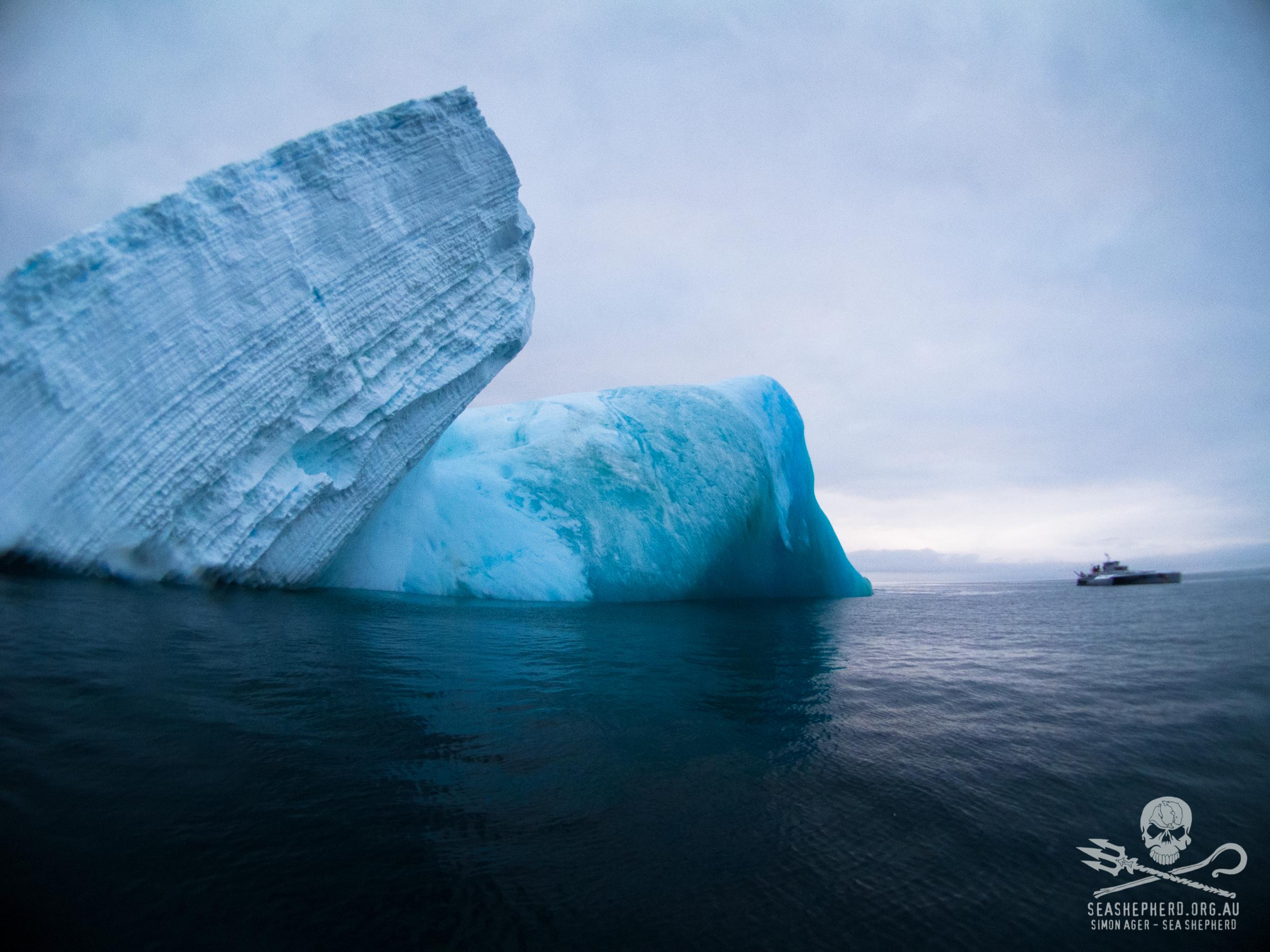 130115_SA_Bardot_passes_iceberg_003.jpg