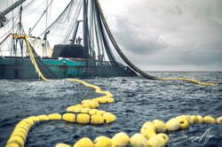 160601-SA-001-F-V-Gueriden-bringing-in-the-nets