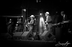 140601-SA-162-Wychwood Festival Sunday 2014.jpg
