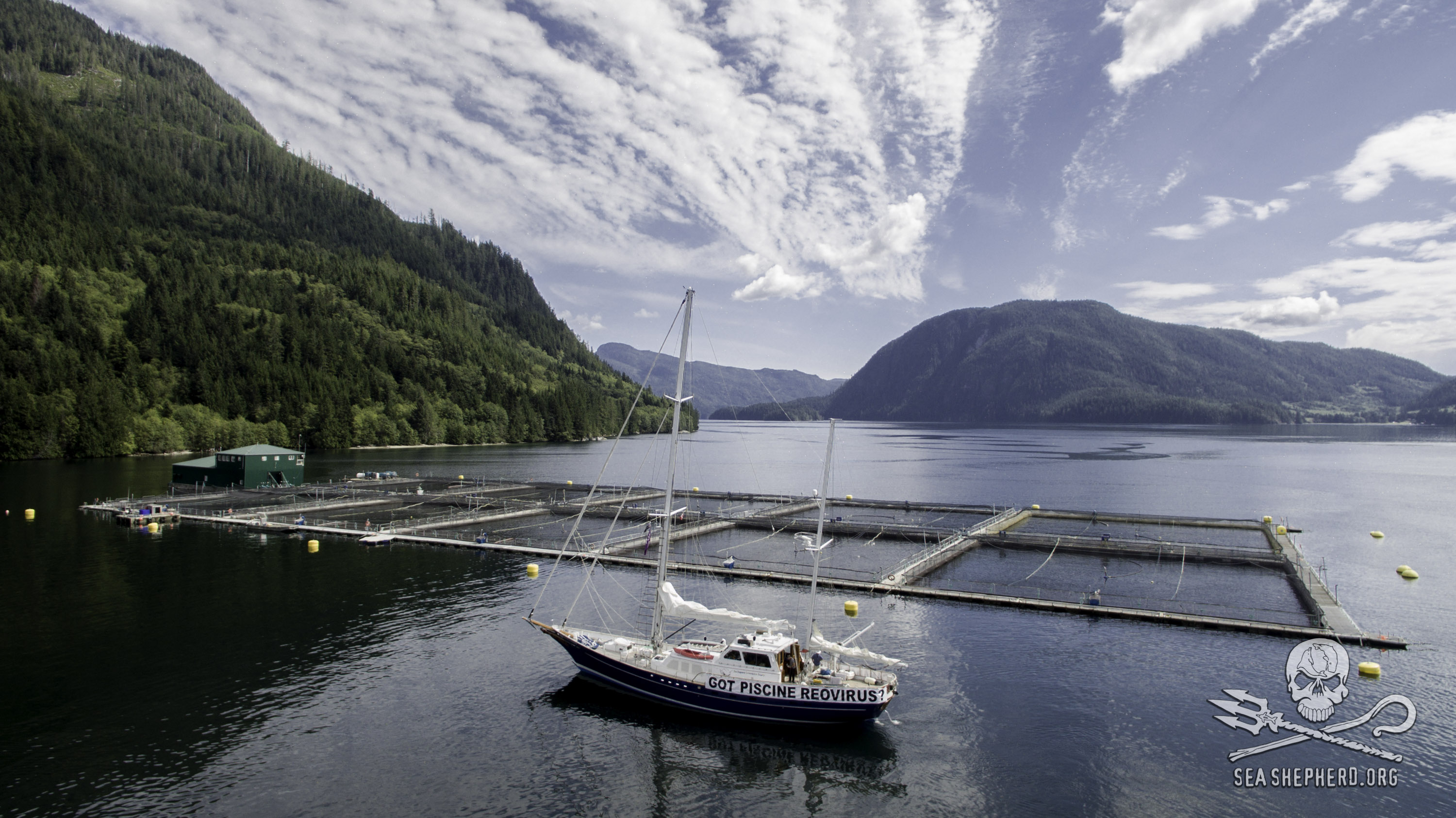 160801-SA-Philips-Point-Atlantic-salmon-farm-0088
