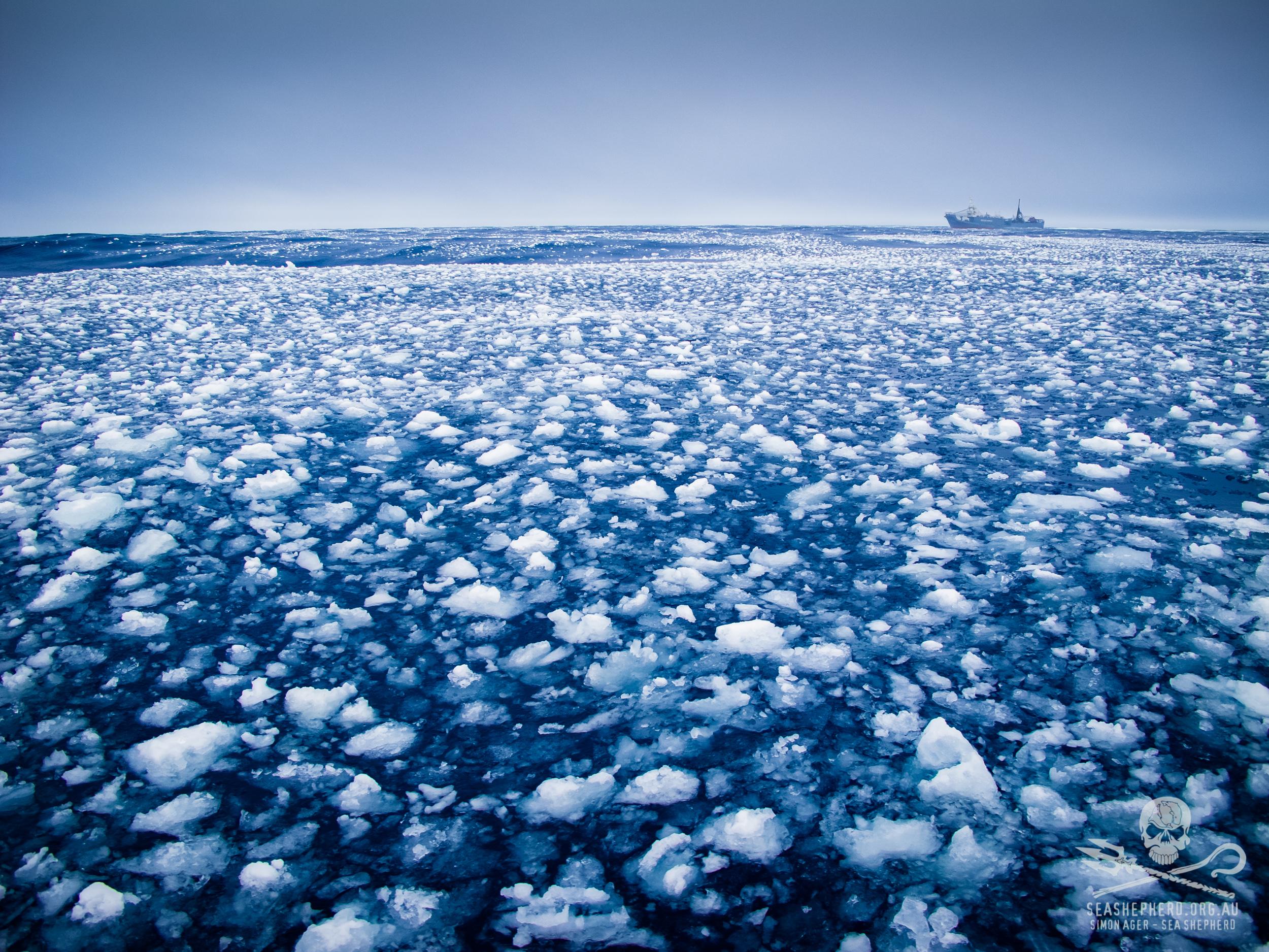 130130-SA-002-YM3-3-miles-from-Bardot-navigating-ice.jpg