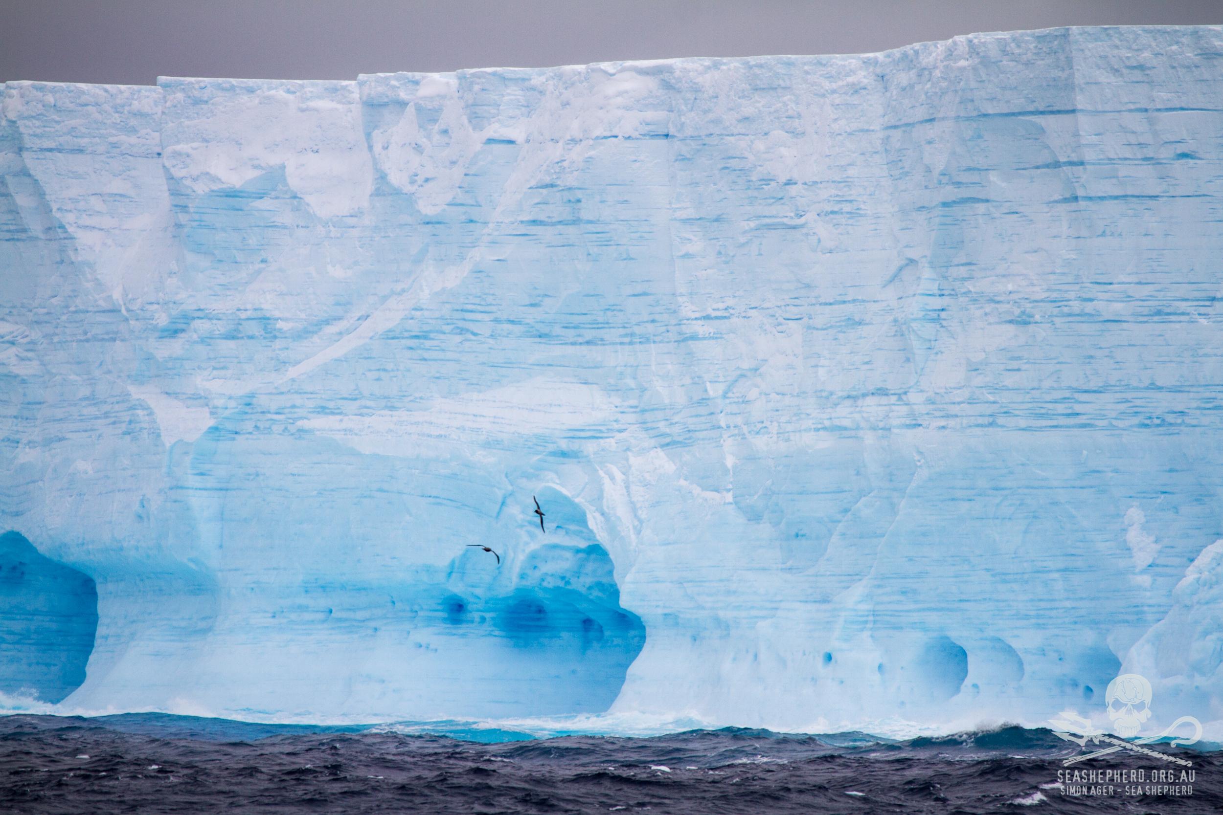 140211-SA-Icebergs-approaching-Balleny-Islands-IMG_5284.jpg